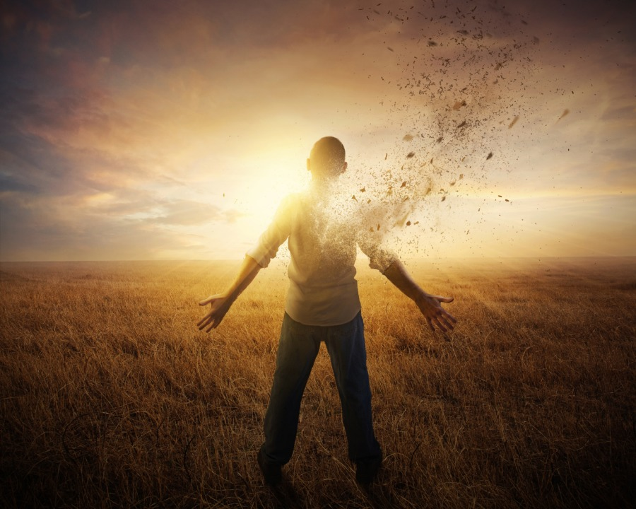 The Creative Destruction of You: Reinvent Yourself for Continued Success