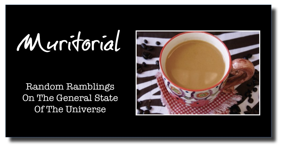 QuestionsNace  Random Ramblings On The General State Of The Universe
