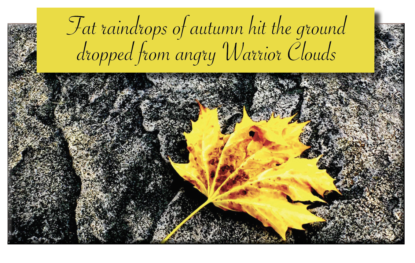Jal windops of autumn hit the ground 5 dropped from anguy Werior Clouds  A oie 8) % ; 29% SAH rn TR Ly