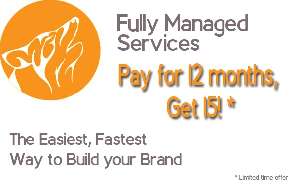Fully Managed Services  Pay for 2 months, Get *  The Easiest, Fastest Way to Build your Brand