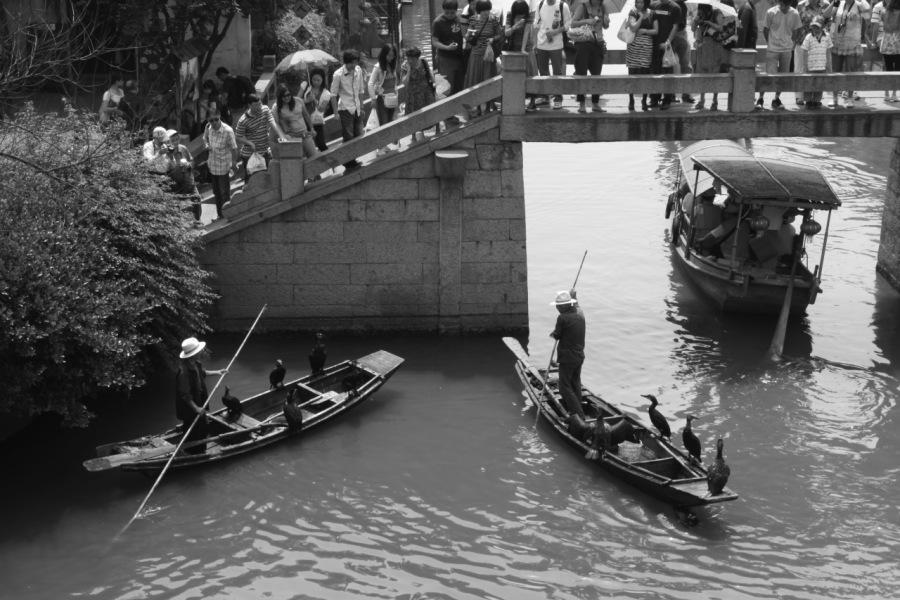 Fish seeking Missiles – Cormorant fishing on the Li River20 ZHONGRUD, RENMIN £38. 0 Bmpr lds rer wren
