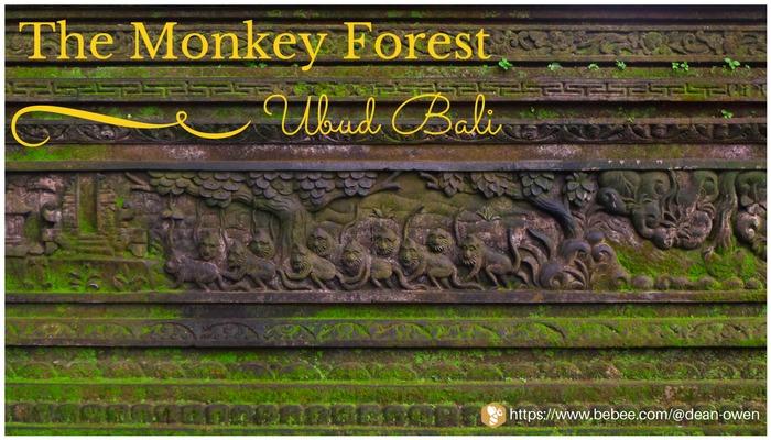 The Monkey Forest SRY WGA