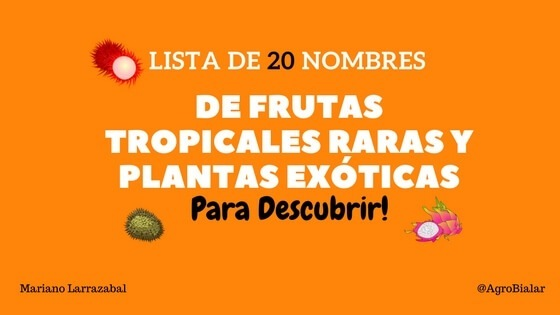 @ LISTADE ' NOMBRES  DE FRUTAS TROPICALES RARAS Y PLANTAS EXOTICAS