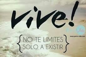 vive! =