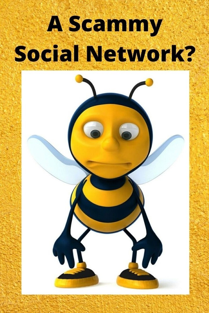 A Scammy Social Network?