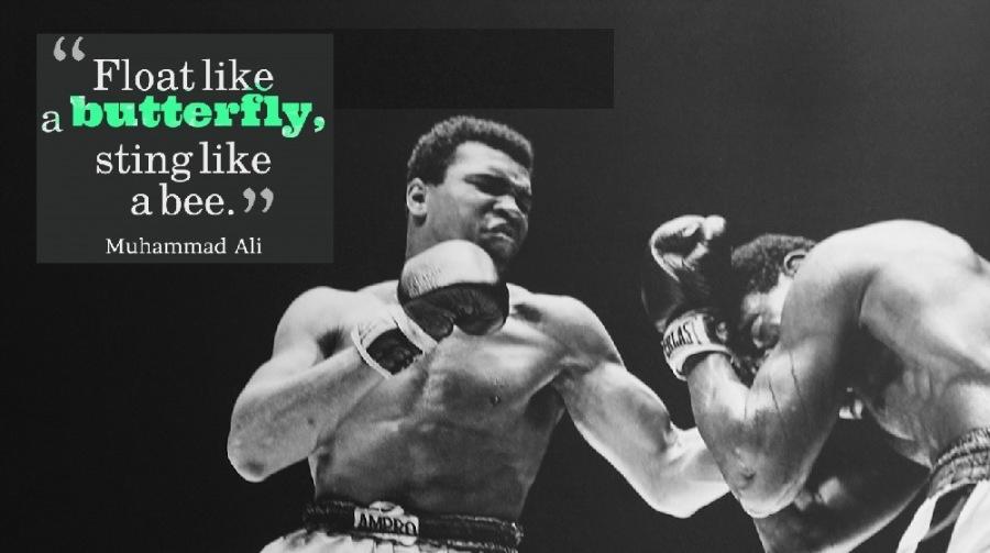 "its ER Ys sting like NS abee."" Muhammad Ali"