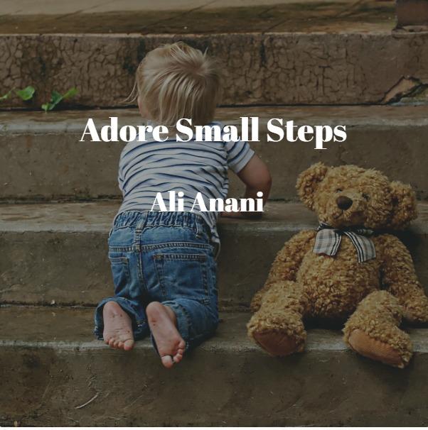 Adore Small Stepsigs Steps<br /> <br /> an