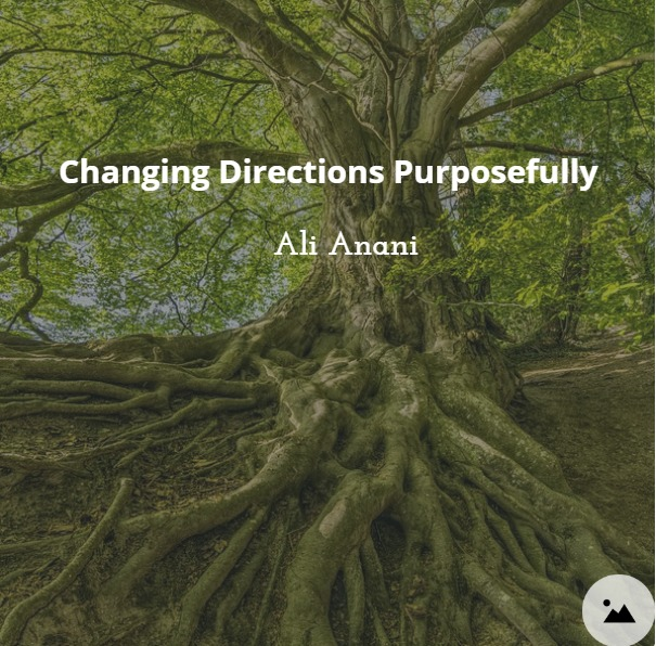Changing Directions Purposefully