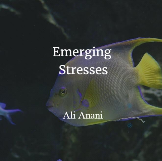 Emerging Stresses