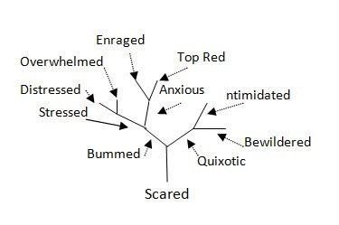 Fractal Emotions and Perceptions