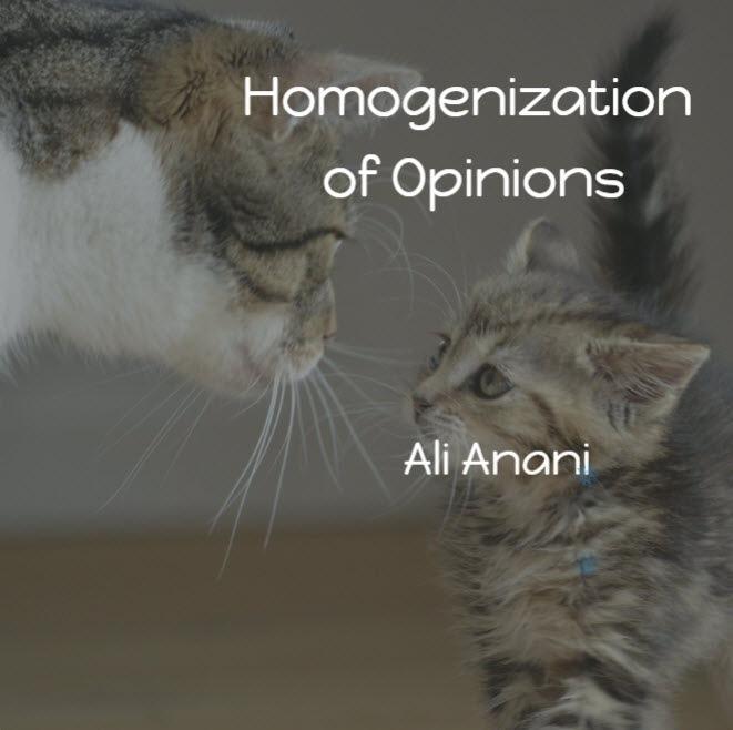 Homogenization of Opinions