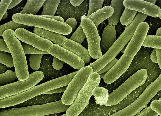 Pathogenic Thinking