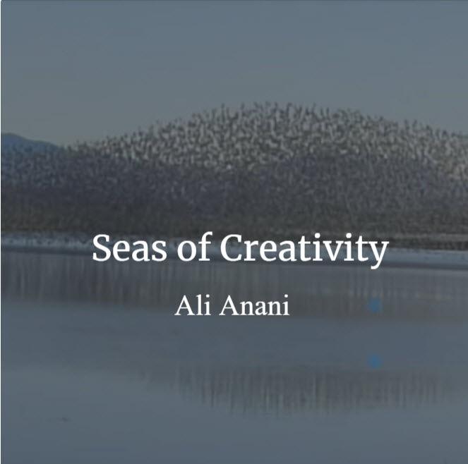 Seas of Creativity