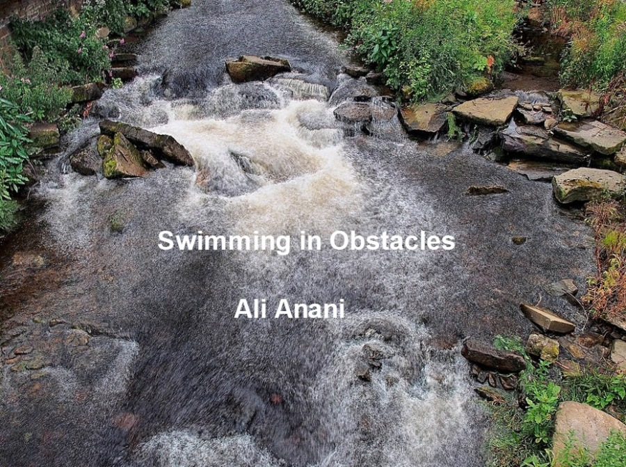 Swimming in Obstacles