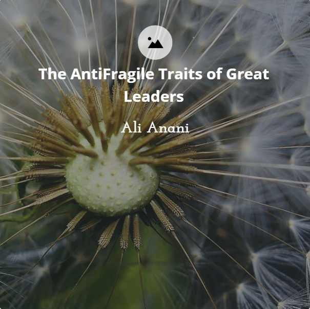 The Antifragile Traits of Great Leaders