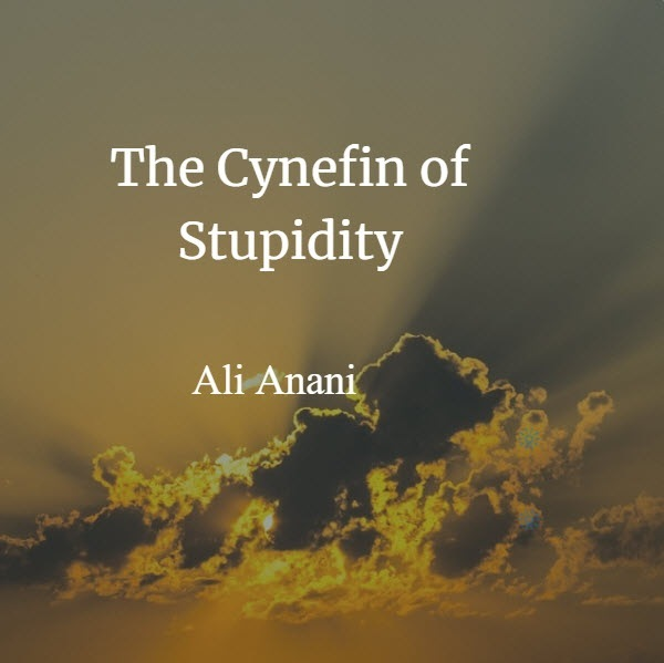 The Cynefin of Stupidity