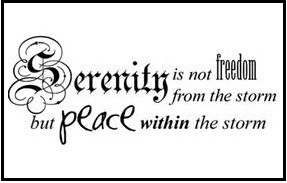 Serenity: fda  from the storm  Fut plac € within the storm
