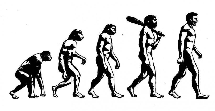Counter-evolutionary