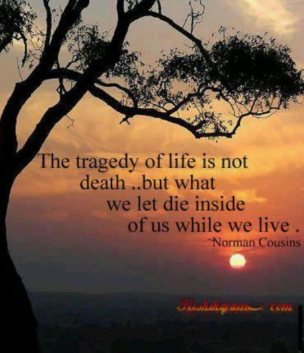 Spit and SawdustThe tragedy of life is not death ..but what we let die inside