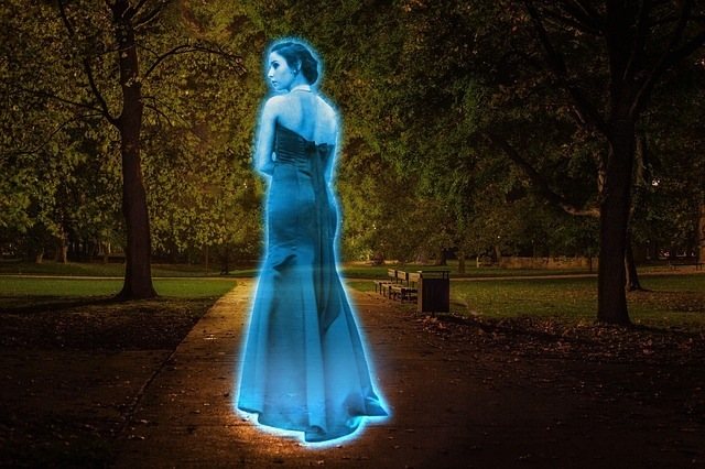 A Visit to the Hologram Museum