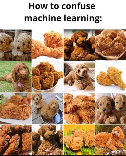 How to confuse machine learning:
