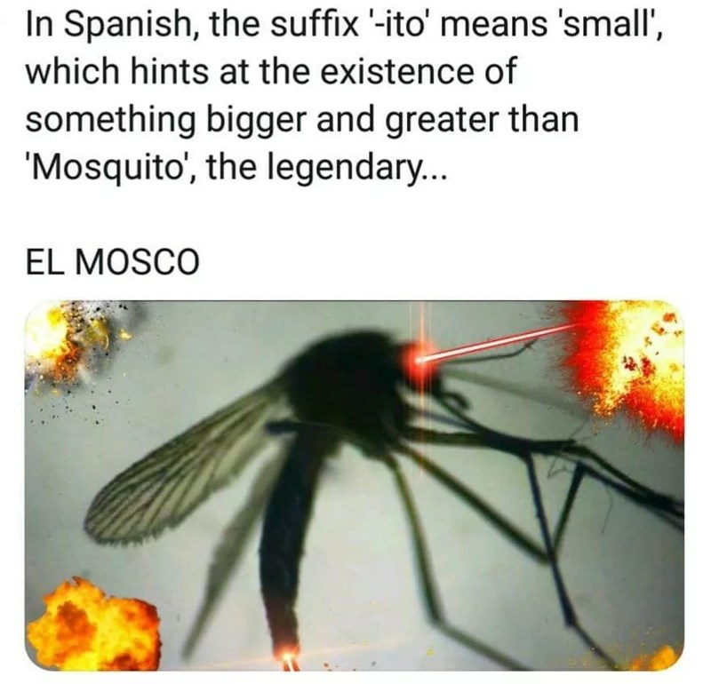 In Spanish, the suffix -ito' means 'small', which hints at the existence of something bigger and greater than 'Mosquito, the legendary...  EL MOSCO