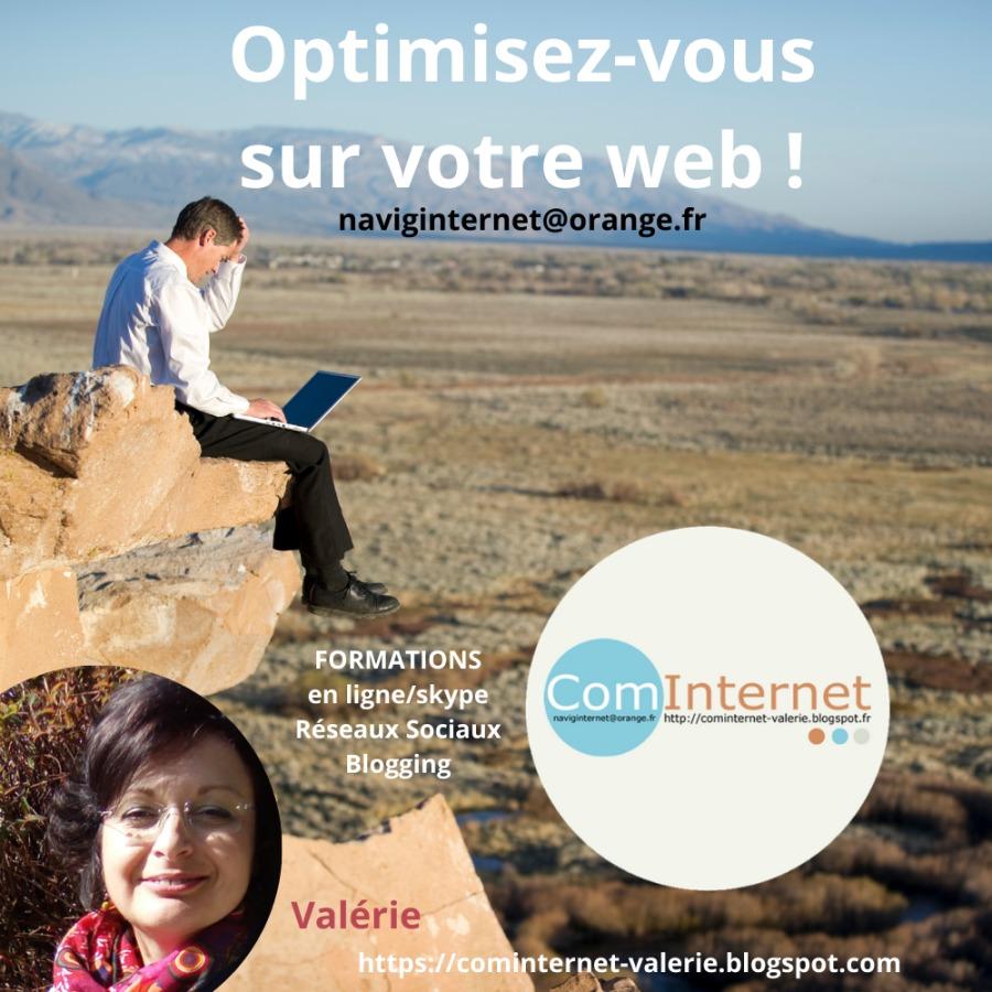 Formation en ligne Réseaux Sociaux Blogging : Community Manager PARIS toute la FRANCEternet-valerie.blogspot.com