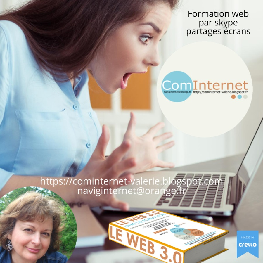 Formation web Réseaux Sociaux en ligne par skype partages écrans Community Manager Social Media Manager WebMarketer VANNES PARIS BREST RENNES MORBIHAN BRETAGNE LORIENTFormation web par skype partages écrans