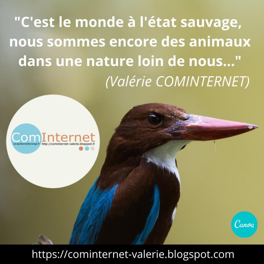 """{FORMATRICE WEB 3.0 POUR LES ENTREPRISES} (Valérie COMINTERNET)FN"""" https://cominternet-valerie.blogspot.com"""