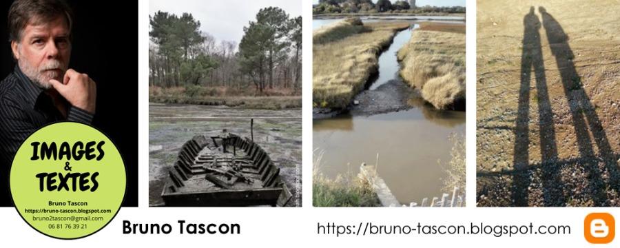 Graphiste à VANNES 56 dans le Morbihan Bretagne (FRANCE)Bruno Tascon https://bruno-tascon.blogspot.com