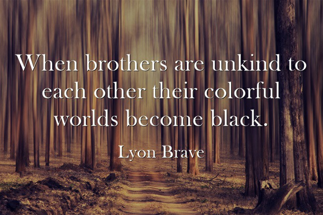 An Unkindness of Brothers by Lyon BraveIf your mother died and she was your paino teacher that would be a hard pill to swallow if your heart was music. An Unkindness of Brothers is about grief and sorrow. Yet it also takes us on an adventure to these fantastic realities where magic happens and we can even talk with god.  Lyon Brave