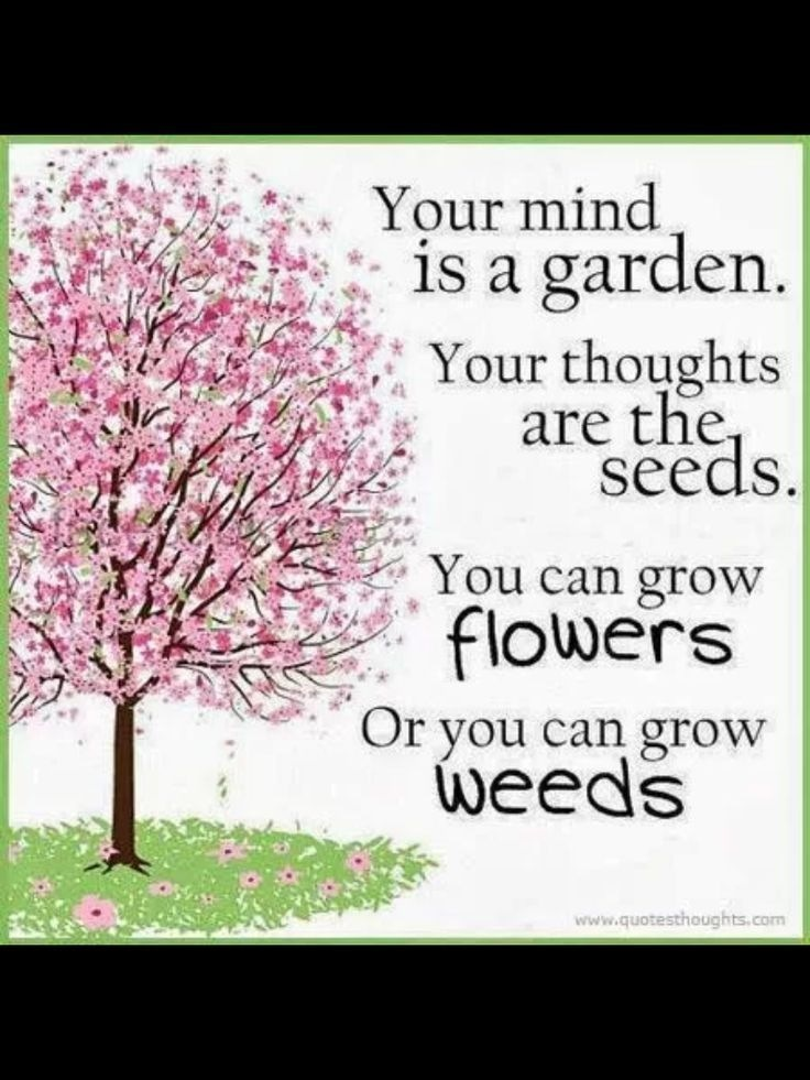 """CENA Your mind LAER: 1 1S a garden. Ni arb (BP  EE ren Yesrrr Bf hts pbs 2 Your thoughts  Ee IN EHS ATE > aA ro 5 are t C. N TN v oi seeds.     Eg 