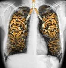 Your World Smoke Free