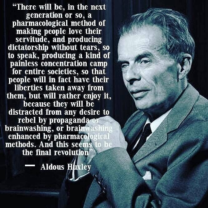 """""""There will be, in the next generation or so, a pharmacological method of making people love their servitude, and producing dictatorship without tears, so to speak, producing a kind of painless concentration camp for cntirc socictics, so that people will in fact have their  liberties taken away from L010 RTT ETL Ta TL because they will be distracted from any desire to rebel by propagand brainwashing, or bra enhanced by pharma methods. And this scél the final revoluf  = Aldous"""