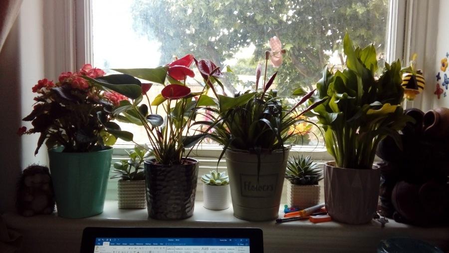 De- Stress Your Workspace, at Zero Cost