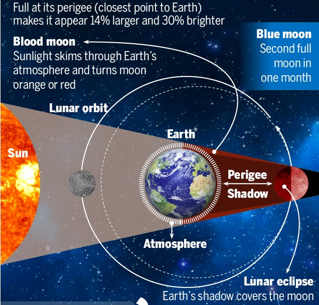 Full at its perigee (closest point to Earth) makes it appear 14% larger and 30% brighter             Blood moon LY LTT Sunlight skims through Earth's Sl il atmosphere and turns moon punt orange or red SUL       Lima eclipse pp EET EES the [lero]