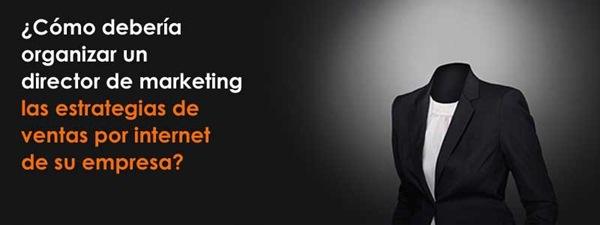 ¢Cémo deberia organizar un  director de marketing las estrategias de ventas por internet de su empresa?