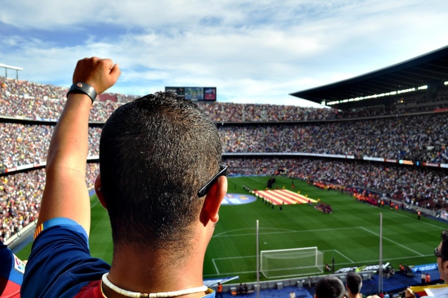Sports Marketing and Fans