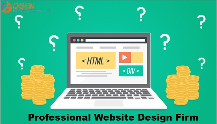 How a Professional Website Design Firm transforms the Face of your Online Business?
