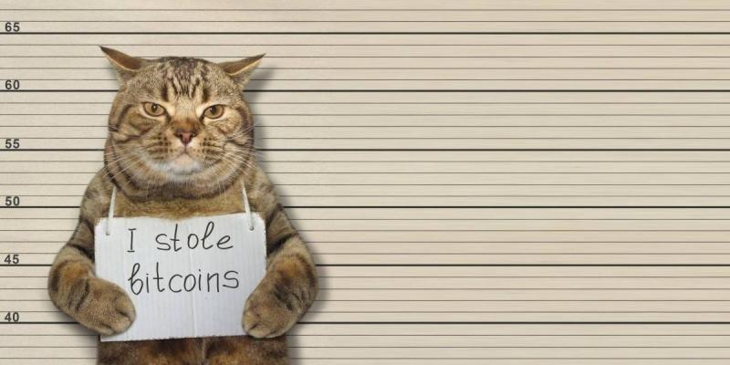 Blockchain not to blameHitcoins