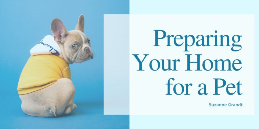 Preparing Your Home for a Pet  Suzanne Grandt