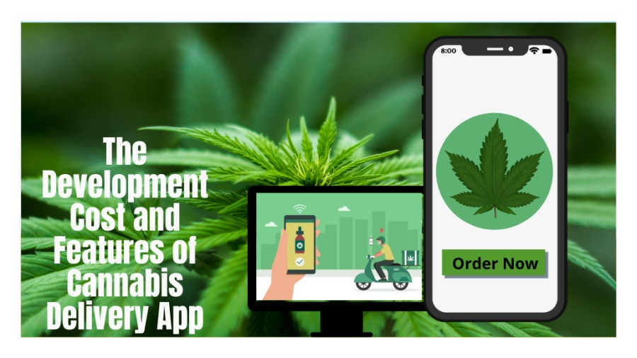 The Development Cost and Features of Cannabis Delivery App