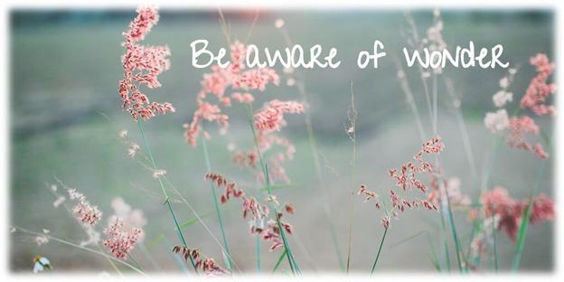 """Be aware of WONDER"""