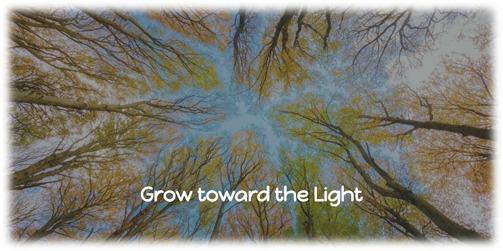 Grow toward the Light