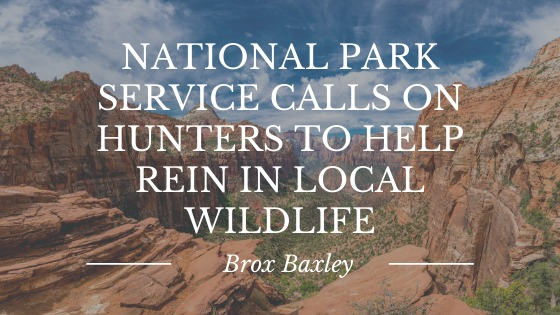 NATIONAL PARK SERVICE CALLS ON HUNTERS TO HELP  REIN IN LOCAL WILDLIFE  — Brox Baxley «+ ———