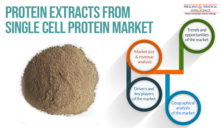 PROTEIN EXTRACTS FROM TREAT SINGLE CELL PROTEIN MARKET