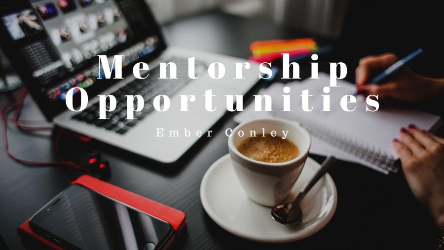 Mentorship Opportunities
