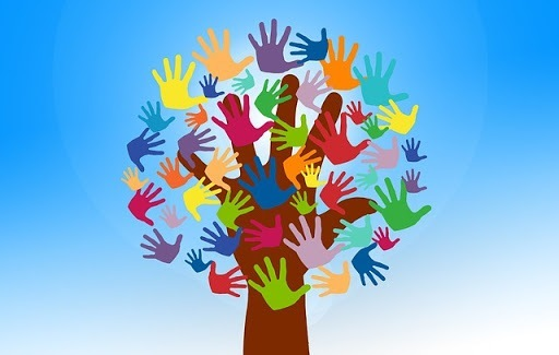 Trabalho voluntário: competências e habilidades desenvolvidas.